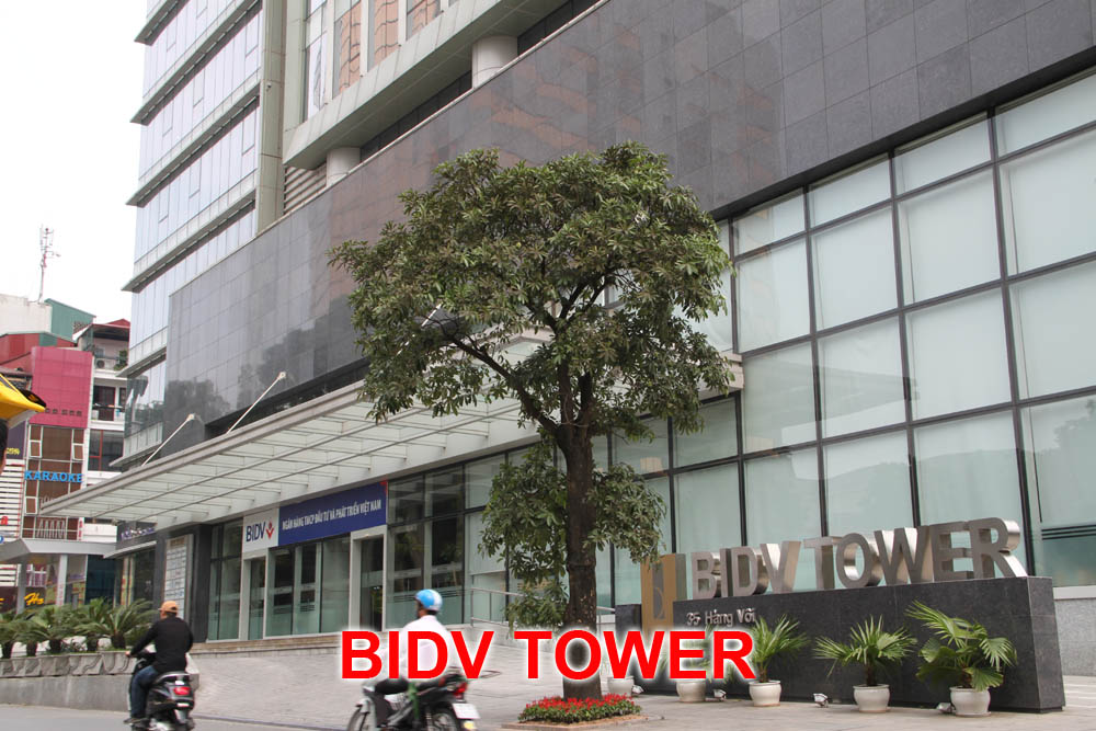 BIDV TOWER